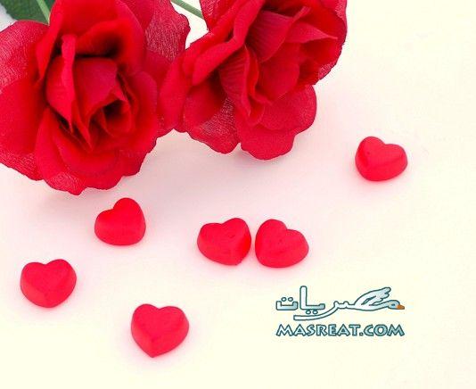 اجمد صور عيد الحب - ورود حمراء
