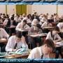 نتيجة الشهادة الاعدادية بالدقهلية 2015 مديرية التربية والتعليم