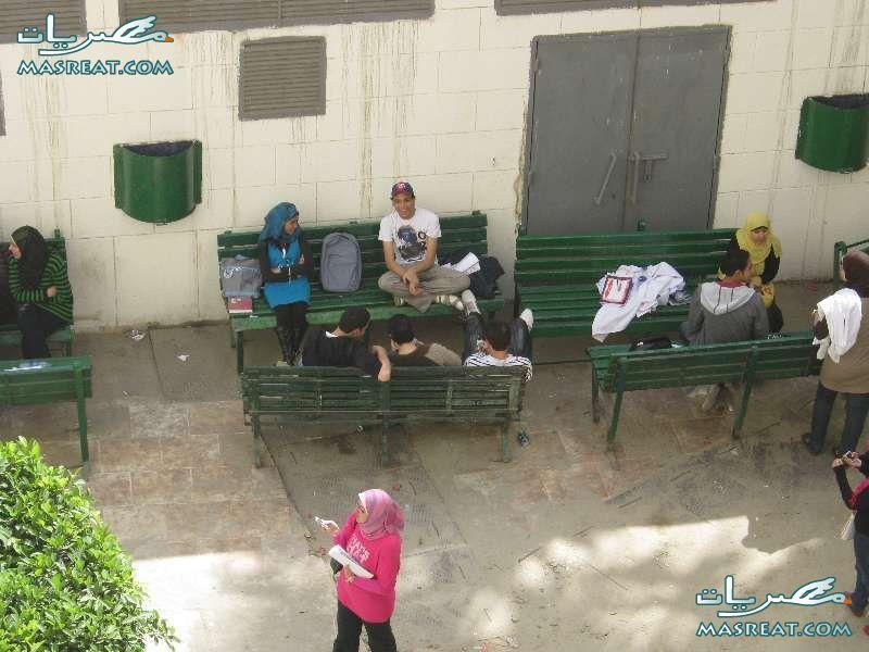 نتيجة كليات جامعة عين شمس 2019 على الموقع الرئيسي