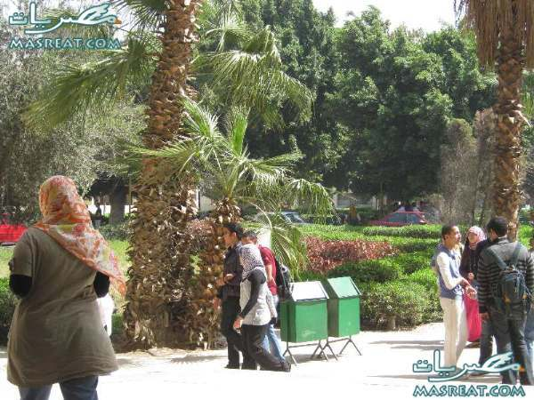 نتائج كليات البنات جامعة عين شمس 2015