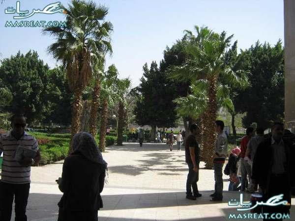 نتائج جامعة عين شمس 2017