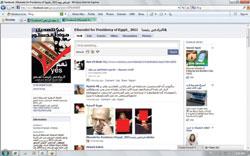 تفاصيل نشر صور جنسية على موقع محمد البرادعي