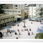 نتيجة كلية الاداب جامعة المنصورة 2015 نتائج اداب المنصورة