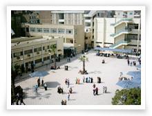نتائج كلية الاداب جامعة المنصورة 2015