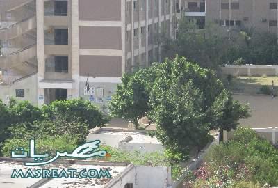 جدول امتحانات الصف الاول الثانوي 2012 محافظة الدقهلية