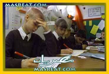 نتيجة الصف السادس الابتدائى محافظة القليوبية 2014 الترم الثاني