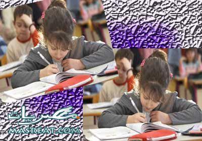 نتائج الشهادة الابتدائية محافظة حلوان