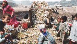 القمامة في مصر