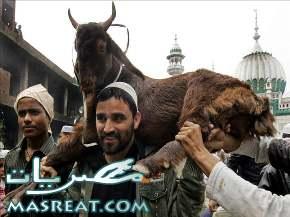 مسجات تهنة عيد الاضحى المبارك ٢٠١٧