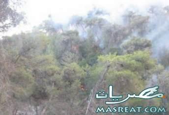 حرائق الكرمل اسرائيل ارتفاع ضحايا حريق اسرائيل الى 34 قتيلا