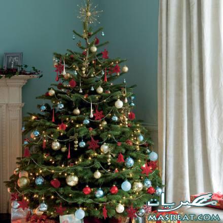 صور شجرة راس السنة الميلادية