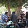 موقع نتيجة كلية التجارة جامعة القاهرة 2014 نتائج جميع الفرق الان