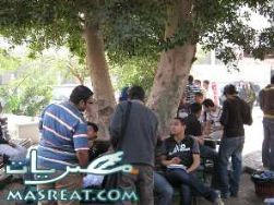 نتائج كلية تجارة جامعة القاهرة