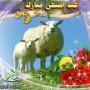 صور خروف العيد 2015/1436 اجمل كروت خرفان عيد الاضحى مضحكة