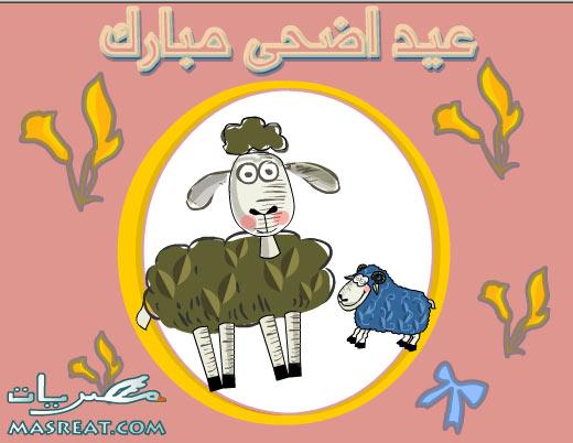 صور مضحكة عن خرفان العيد