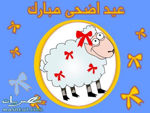 صورة خروف عيد الاضحى المبارك