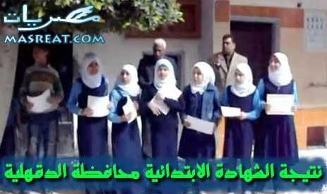 نتيجة الشهادة الابتدائية محافظة الدقهلية برقم الجلوس 2015