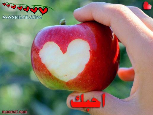 رسائل حب قوية قصيرة وطويلة 2019 مسجات حب وعشق مؤثرة للحبيب
