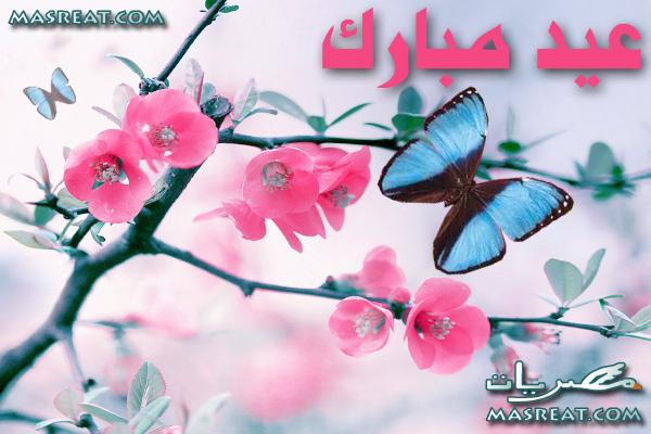صور خلفيات للعيد الفطر