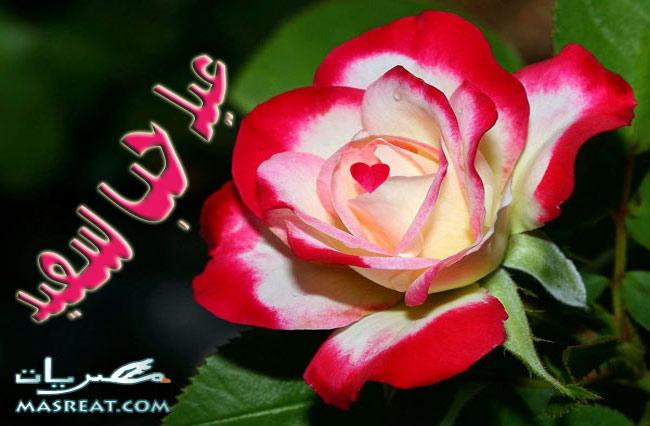 رسائل عيد الحب 2014 رومانسية للحبيب