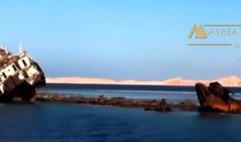 اخر اخبار حكم الغاء اتفاقية تيران وصنافير